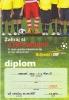 Diplom 2010_1