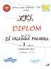 Diplom 2010_3