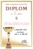 Diplom 2010_5