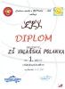 Diplom 2010_6