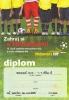 Diplom 2010_7